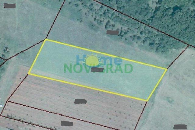 Land, 7979 m2, For Sale, Bužinija