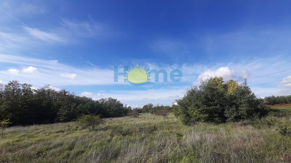 Land, 4370 m2, For Sale, Kaštelir