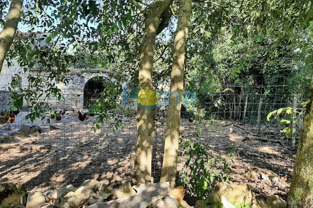 Istra, Sveti Lovreč - 50 m2 ruin with 36000 m2 of agricultural land