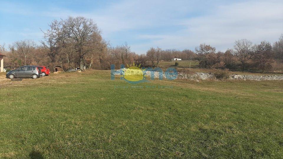 Istra, Tinjan - building land, 25EUR/m2