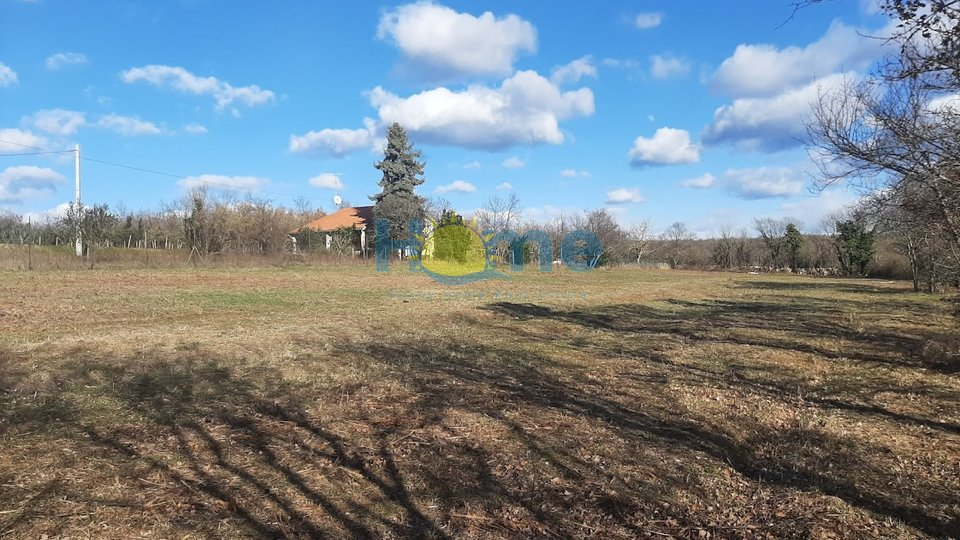 Istra - Višnjan (okolica) , 4 lijepe građevinske parcele za 45 EUR/m2