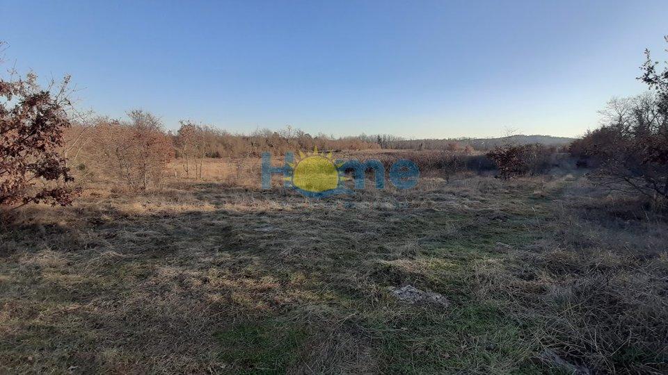 Grundstück, 22975 m2, Verkauf, Poreč - Dračevac