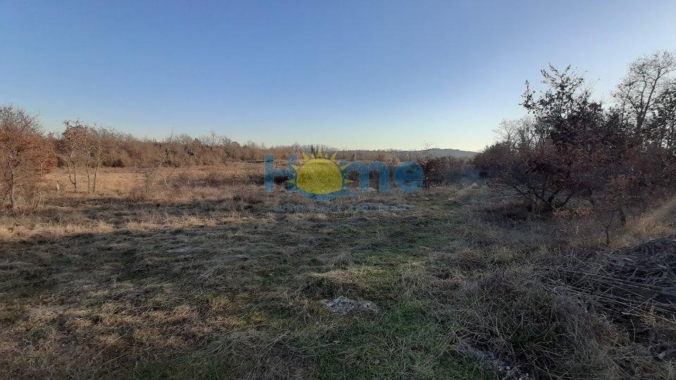 Terreno, 22975 m2, Vendita, Poreč - Dračevac